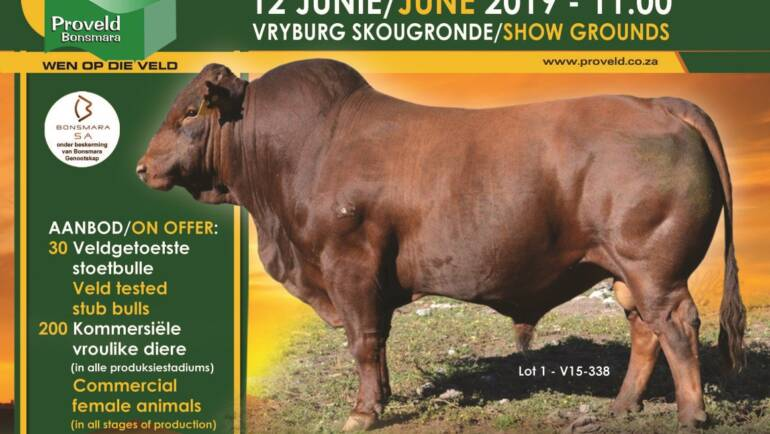Produksie veiling 12 Junie / Production Auction 12 June